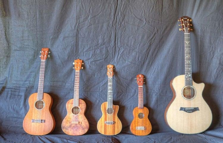 ukulele vs guitar size comparison