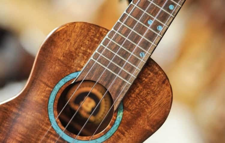 ukulele vs guitar strings comparison