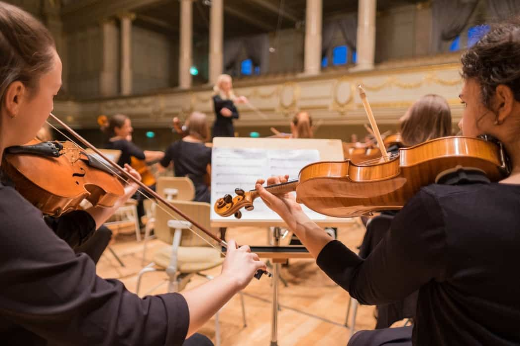 Violin price for professionals playing in orchestra.
