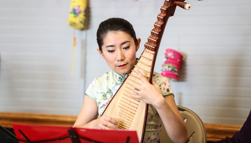chinese string instrument pipa
