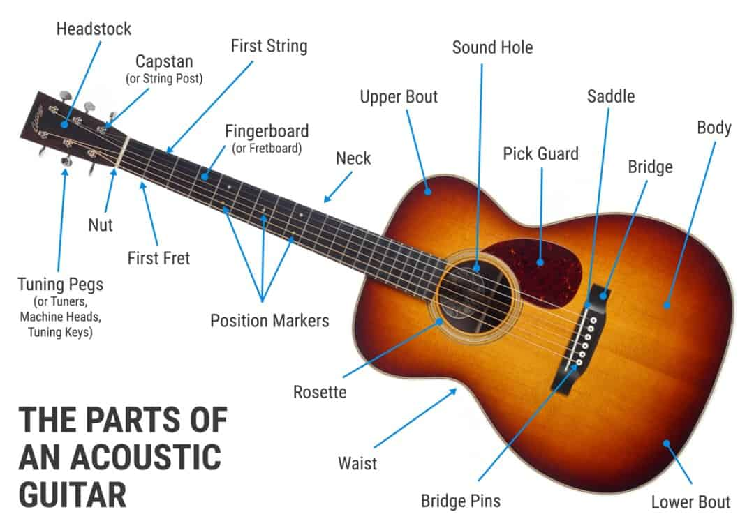 Different parts of an acoustic guitar.